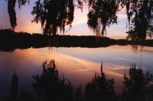 lake-study