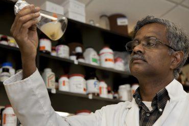 Horticulture Professor Balasubramanian Rathinasabapathi (Saba). Experiments, beaker, laboratory. UF/IFAS Photo by Tyler Jones.
