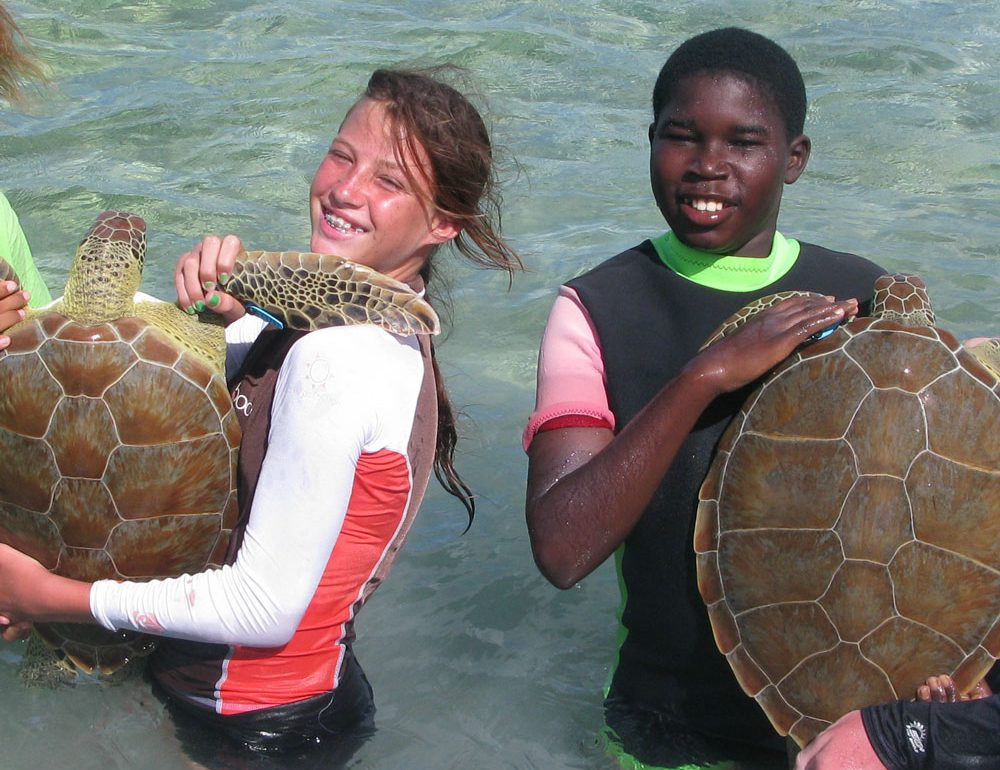 Archie Carr Center for Sea Turtle Research, kids holding sea turtles