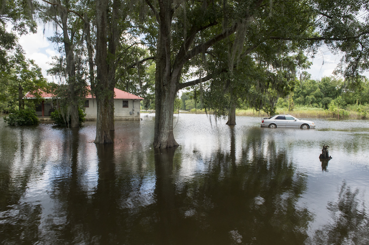 Standing floodwaters in Ascension Parish, Louisiana. Photo by J.T. Blatty/FEMA