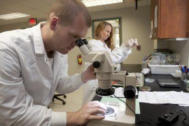 Front- John Bonkowski lab assistant, Anne Vitoreli Laboratory manager
