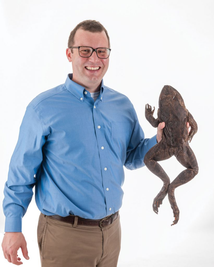 David Blackburn holds a goliath frog, the largest frog in the world. This specimen is from Cameroon and was donated in the 1980s. The species is threatened and is hunted for food.