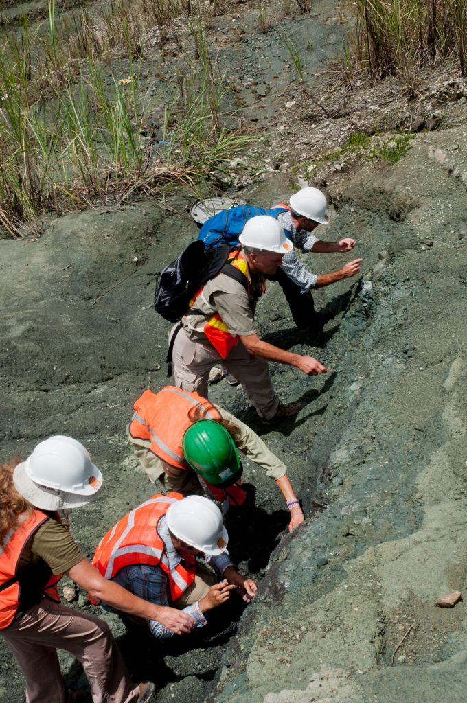 MacFadden has provided hands-on learning opportunities for teachers at digs along the Panama Canal and at UF's Montbrook fossil site and Powell Hall.