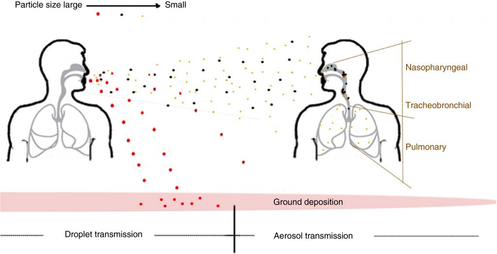 Diagram of how particles are transmitted through the air following a sneeze.