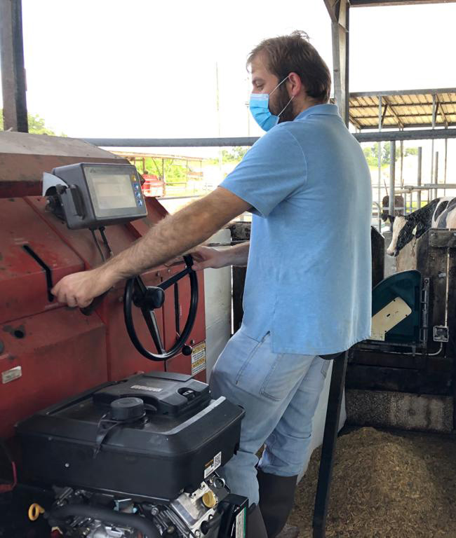 Richard Lobo wears a mask while using a machine to feed the cows.