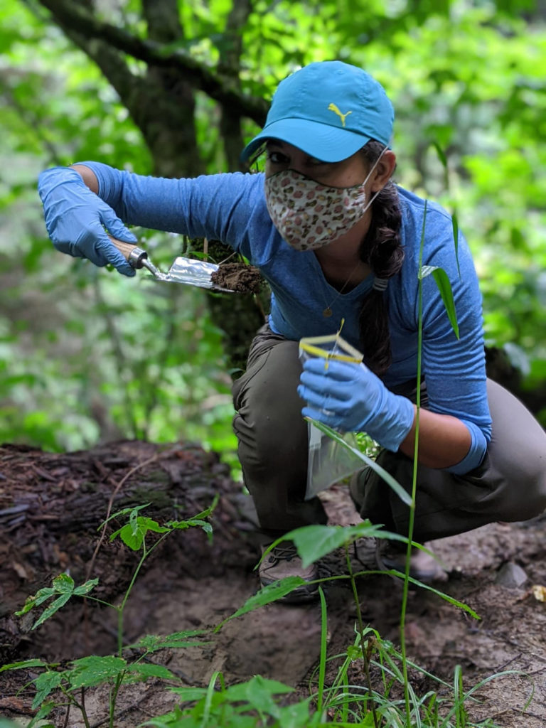 Sarah McGrath-Baker scoops soil into bag, and wearing mask while conducting field research.